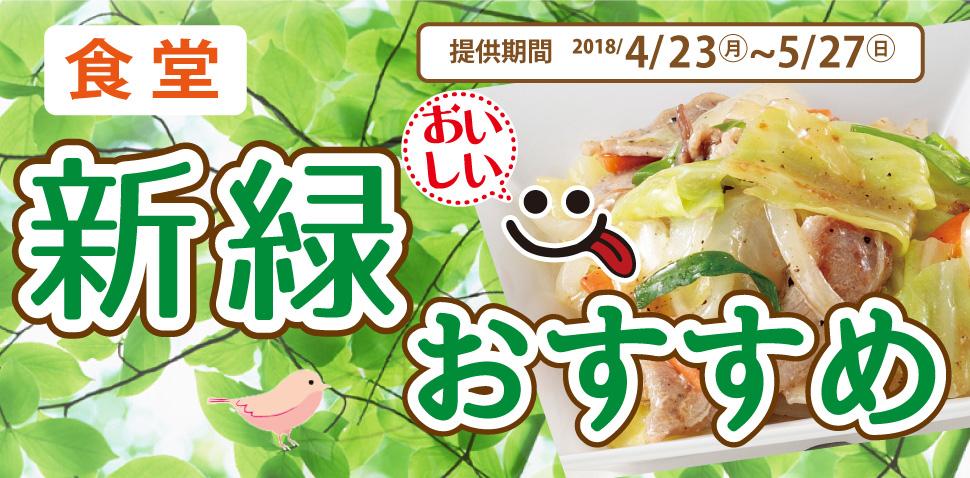食堂 新緑のおいしいおすすめ